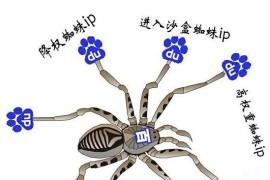 如何提高百度蜘蛛抓取量
