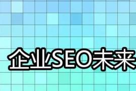企业网站优化需要更高水平的seo人员?