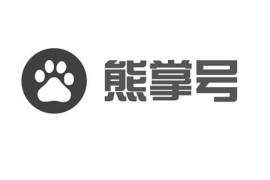 为什么说熊掌号不得不关注?快来跟深圳seo欢欢看看吧!