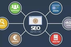 SEO优化如何运用行业词库快速抢占搜索流量?