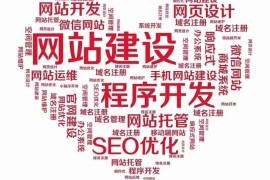 使用技术手段做seo网站优化注意要点