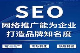 SEO怎样更为有利的对网站首页进行优化