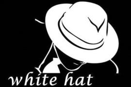 套用白帽技术优化3个月的新站心得分享