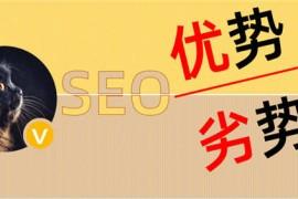 陈小龙:SEO的优势与劣势