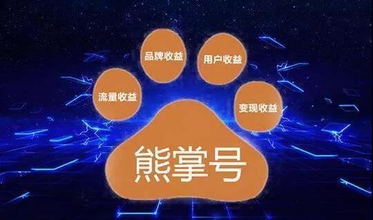 为什么说熊掌号不得不关注?快来跟深圳seo欢欢看看吧! 百度 第2张